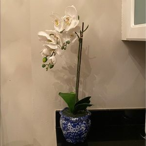 Faux white orchid with blue & white vase